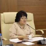 Елена Голомарева: Законопроект не соответствует закрепленным Конституцией Российской Федерации принципам